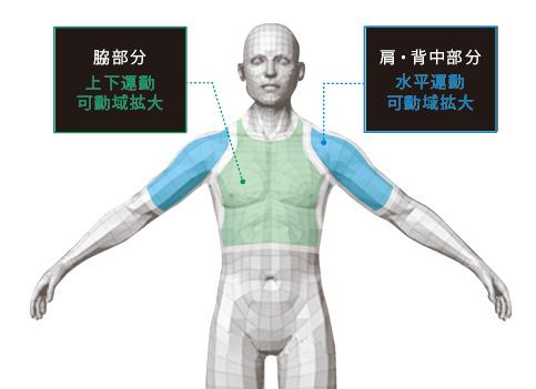 4DFITT人体図